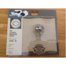 GENUINE HARLEY DAVIDSON AIR CLEANER MOUNTING SCREW 29600-00