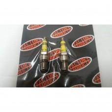 Spark Plugs for 1984 & Later FL, FX, 1340 EVOLUTION
